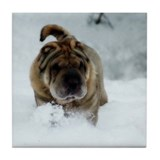 Snow Shar-Pei Tile Coaster