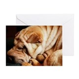 Snow Shar-Pei Greeting Card