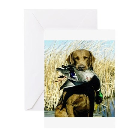 Chesapeake Bay Retriever Greeting Cards (Pk of 10)