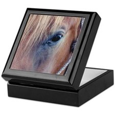 Unique Quarter horses Keepsake Box