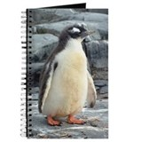 Dreamy Baby Penguin Journal