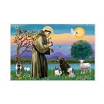 St Francis/3 dogs Mini Poster Print