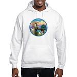 St Francis/3 dogs Hooded Sweatshirt