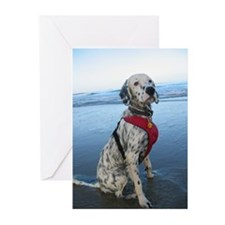 Wet Setter Greeting Cards (Pk of 10)