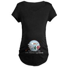 Stork Baby Mexico USA T-Shirt