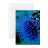 Blue Thistle Greeting Cards (Pk of 20)