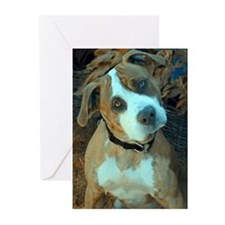 Pit Bull Weasle Greeting Cards (Pk of 20)
