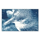 Little Blue Penguin Cyanotype Sticker (Rectangular