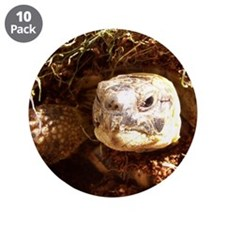 "Tortoise 3.5"" Button (10 pack)"