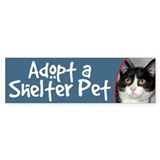 Adopt a Shelter Pet bumper sticker cat