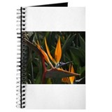 Bird of Paradise Flower Journal