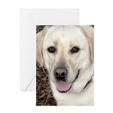White Labrador Retriever Greeting Card