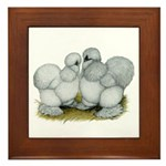 Silkie Chickens Self Blue Framed Tile