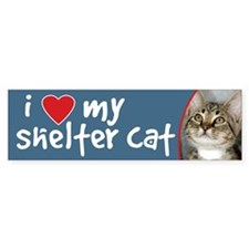 I Love My Shelter Cat bumper sticker kitten