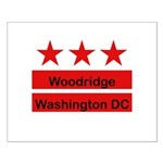 Woodridge - D.C . Flag Inspir Small Poster