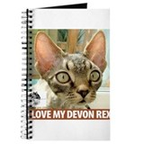 Devonshire Rex Journal