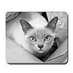 Kuki-Cat Mousepad