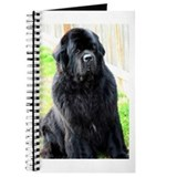 Newfie, Newfoundland Dog Journal