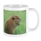 Unique Beaver Mug