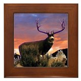 Sunset Buck Framed Tile