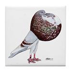 Champion Cropper Pigeon Tile Coaster