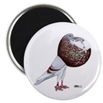 "Champion Cropper Pigeon 2.25"" Magnet (100 pac"