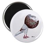 "Champion Cropper Pigeon 2.25"" Magnet (10 pack"