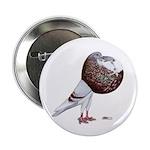 """Champion Cropper Pigeon 2.25"""" Button"""