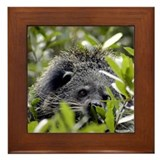 Bearcat Framed Tile