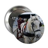 "Mystic Horse 2.25"" Button (10 pack)"