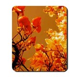 Orange Japanese Magnolia Mousepad