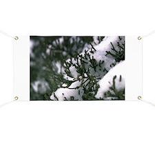 Snowy Evergreen Banner