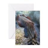 Cute Marine animal Greeting Card