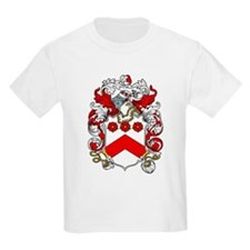 Hayles Coat of Arms Kids T-Shirt