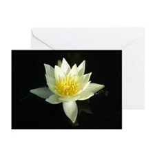 White lotus flower Greeting Cards (Pk of 20)