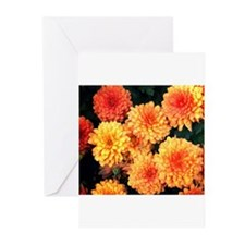Insect on a Mum Greeting Cards (Pk of 10)