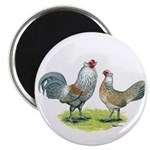 "Ameraucana Chicken Pair 2.25"" Magnet (10 pack"