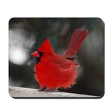 Male Cardinal Mousepad