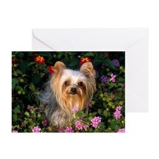 Flowered Greeting Cards (Pk of 10)