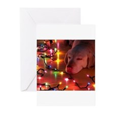 A Light Nap Greeting Cards (Pk of 20)