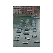 Cinque Terre Boats Rectangle Magnet