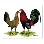 American Gamefowl Pair Small Poster