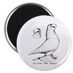 "Royal Snow Tumbler Pigeon 2.25"" Magnet (10 pa"