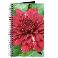 Red Dahlia Journal / Notebook