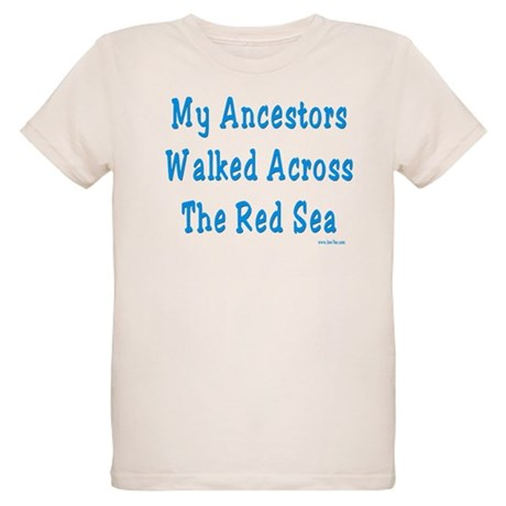 Red Sea Passover Organic Kids T-Shirt