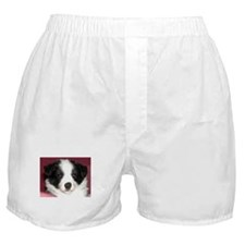 Unique Breed Boxer Shorts