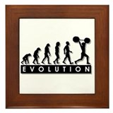 Evolution of Body Building Framed Tile
