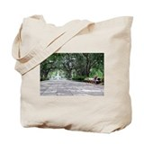 Fountain in Savannah, Ga Tote Bag