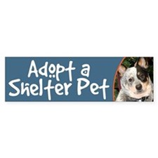 Adopt a Shelter Pet Cattle Dog Bumper Bumper Sticker