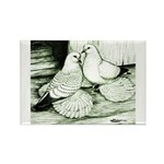 Ice Pigeons Rectangle Magnet